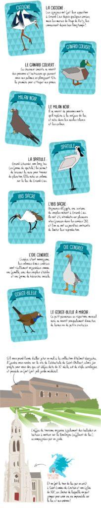 Histoire du lac de Grand-Lieu, Bouaye, partie 3